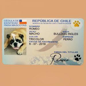 Credencial para Mascotas