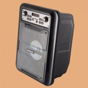 Parlante Portátil Aiwa Bluetooth Karaoke Awp-122BT